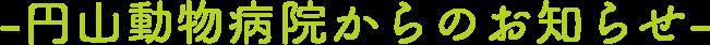 -円山動物病院からのお知らせ-